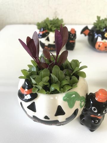 ハロウィン ポット_5